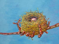 ' Golden Nest '   2008 oil & tempera on canvas 50 x 47 cm